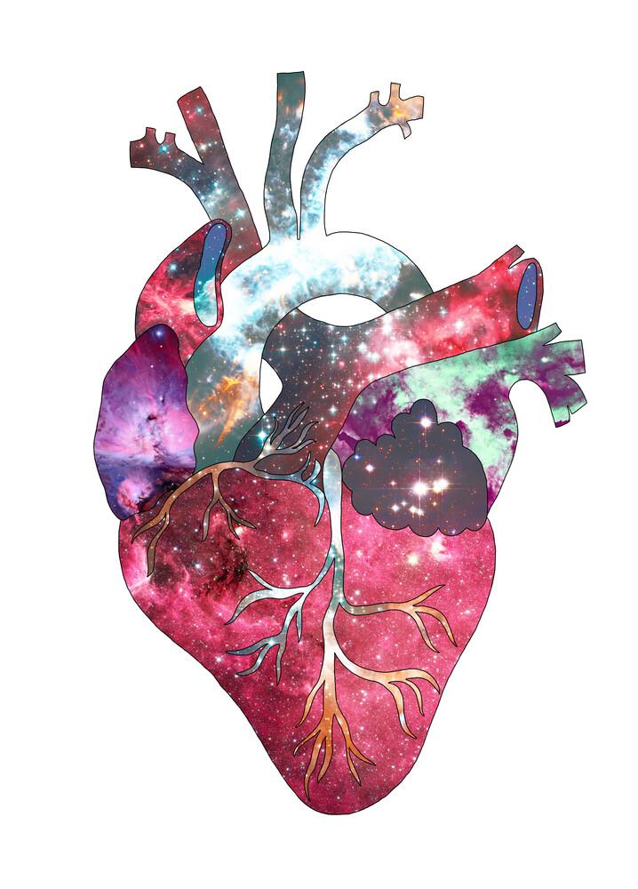 Superstar Heart - fotokunst von Bianca Green