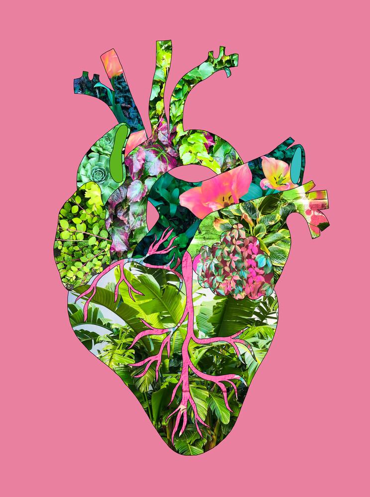 Mein Botanisches Herz Pink - fotokunst von Bianca Green