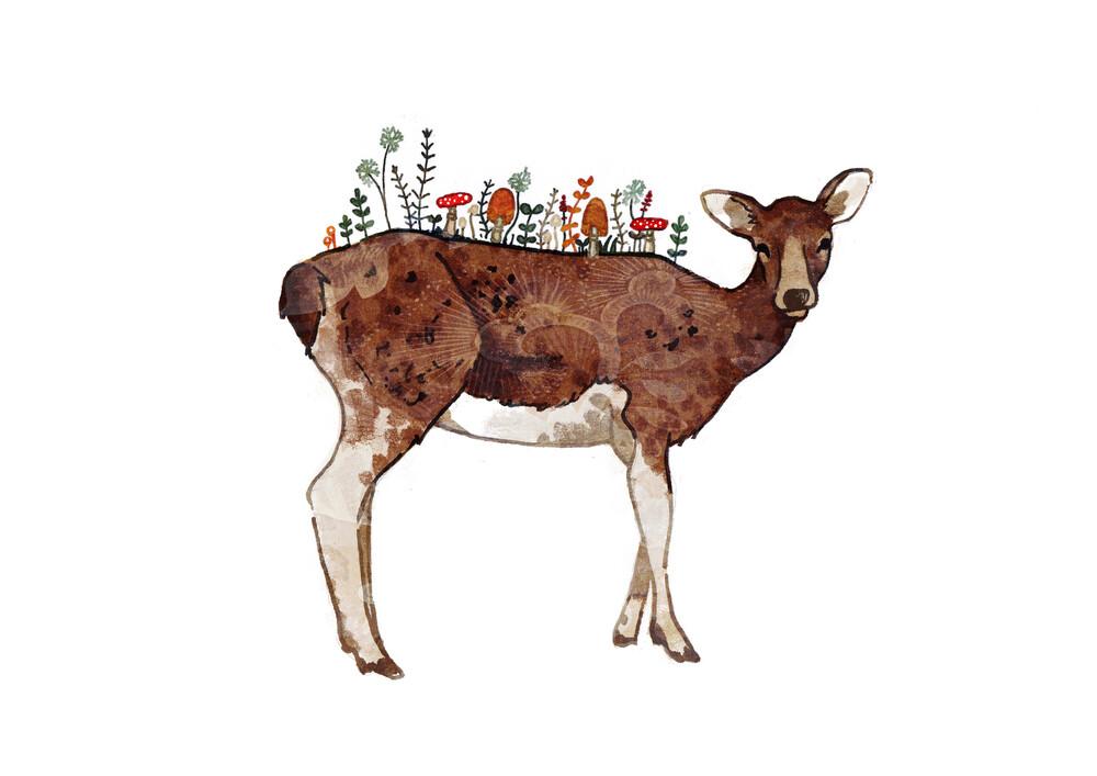 Autumn Deer - fotokunst von Katherine Blower