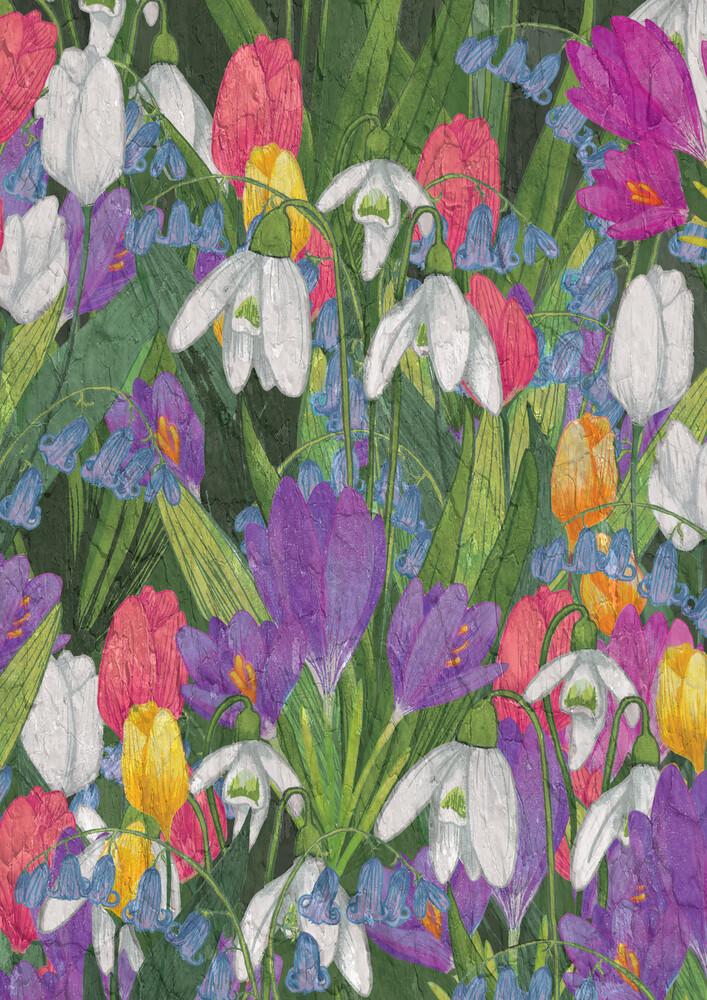 Spring Flowers - fotokunst von Katherine Blower