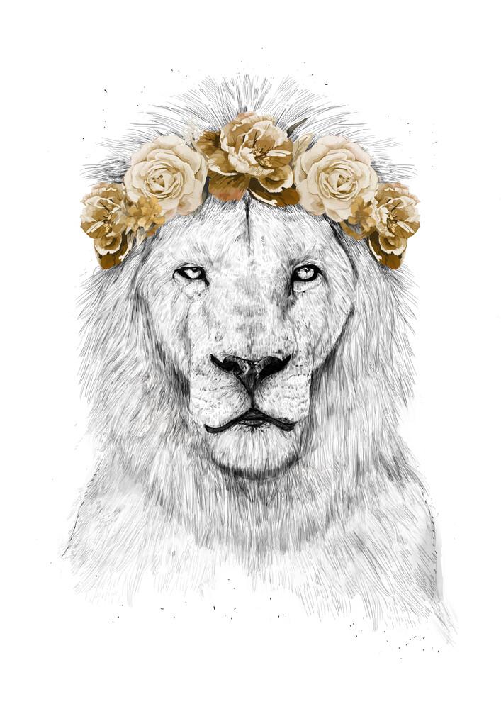 Festival lion - fotokunst von Balazs Solti