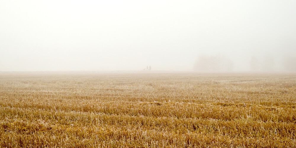 Misty Humans - Fineart photography by Karl Johansson