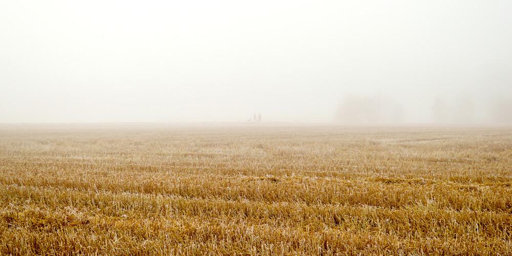 Misty Humans - fotokunst von Karl Johansson