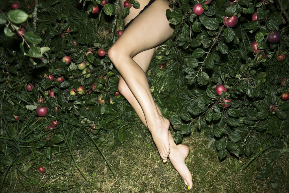 The Cider House Legs - fotokunst von Linas Vaitonis