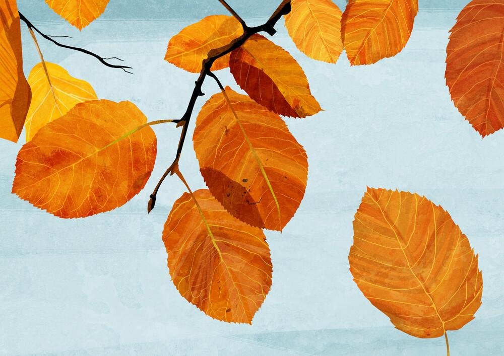 Autumn Leaves - fotokunst von Katherine Blower