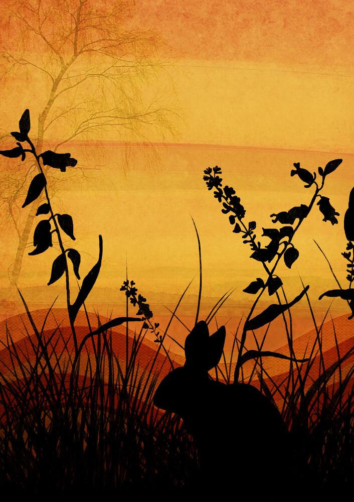 Orange Skies - fotokunst von Katherine Blower