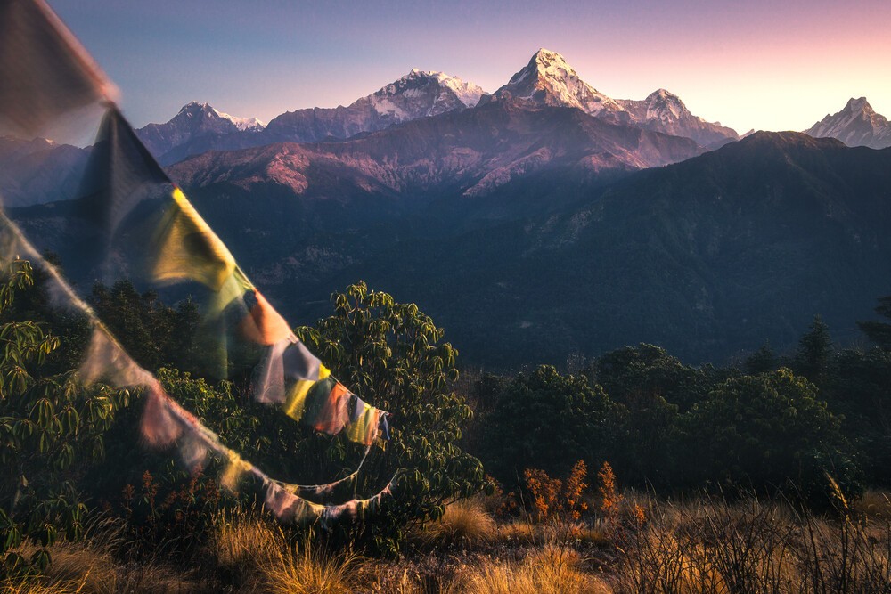 Flags&Top - Fineart photography by Martin Morgenweck