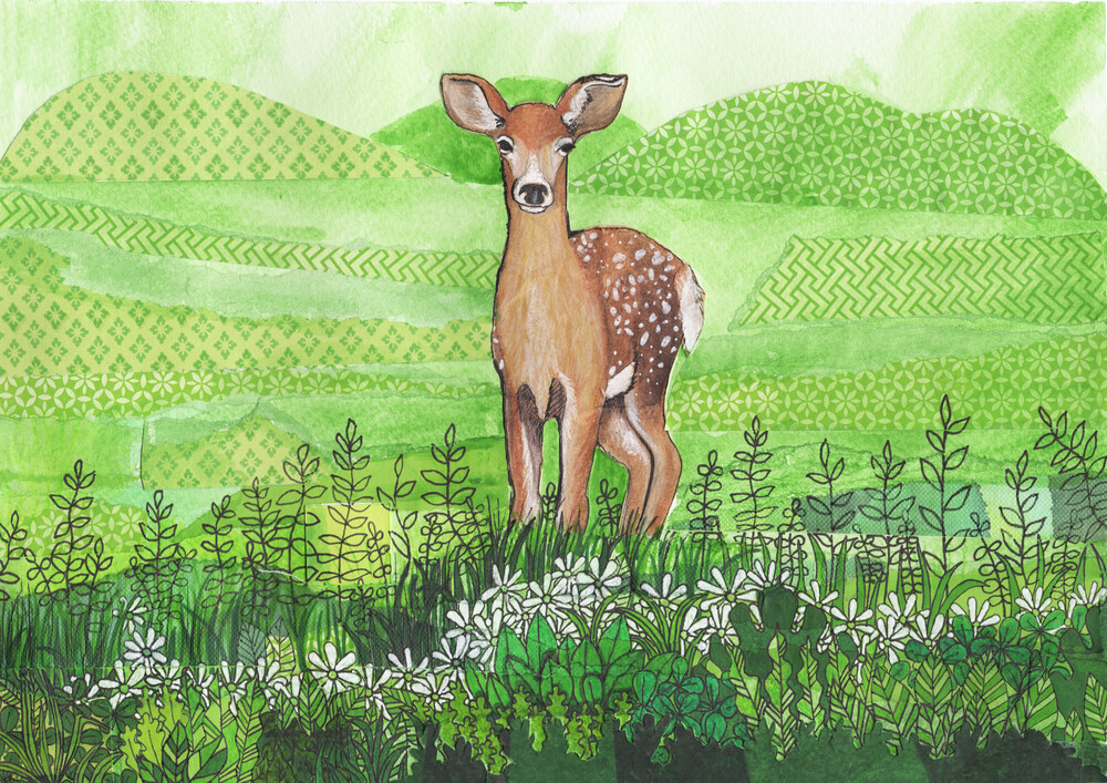 Springtime Deer - fotokunst von Katherine Blower