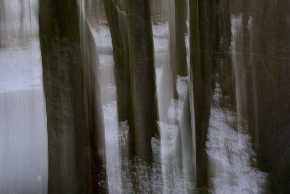 Standhaftigkeit - fotokunst von Sascha Hoffmann-Wacker