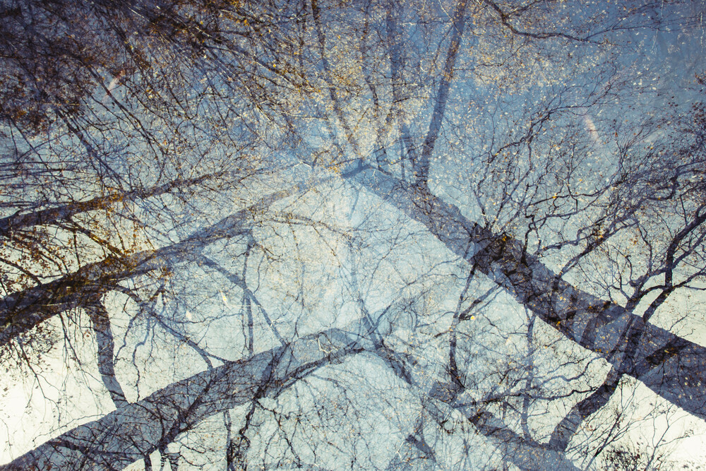 Herbsthimmel Doppel - fotokunst von Nadja Jacke