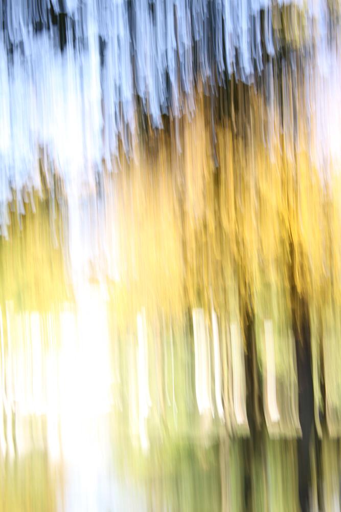 autumn abstract #12 - fotokunst von Steffi Louis