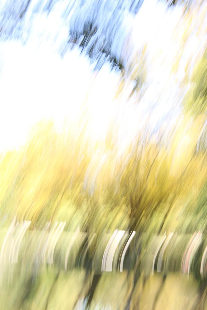 autumn abstract #11 - fotokunst von Steffi Louis