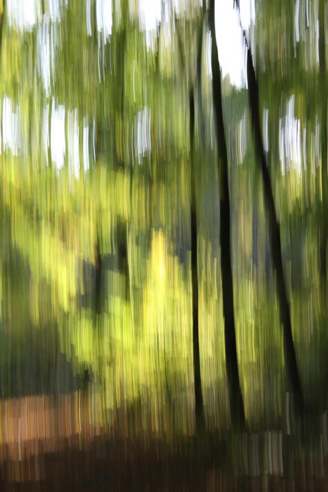 autumn abstract #o6 - fotokunst von Steffi Louis