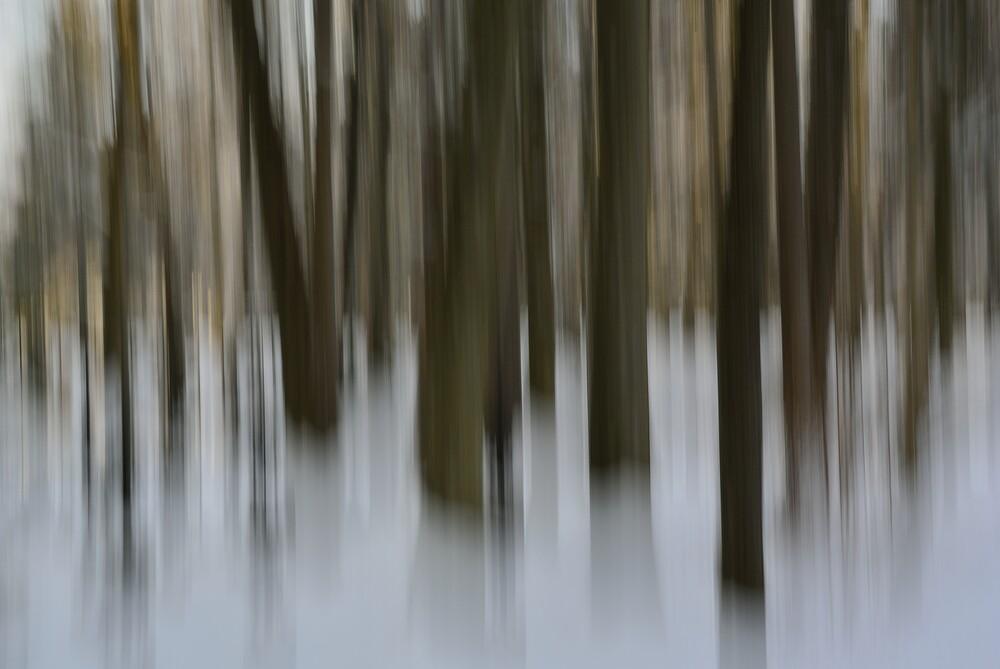braun - Fineart photography by Sascha Hoffmann-Wacker