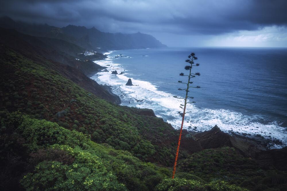 Teneriffa Anaga Gebirge und Küste - fotokunst von Jean Claude Castor