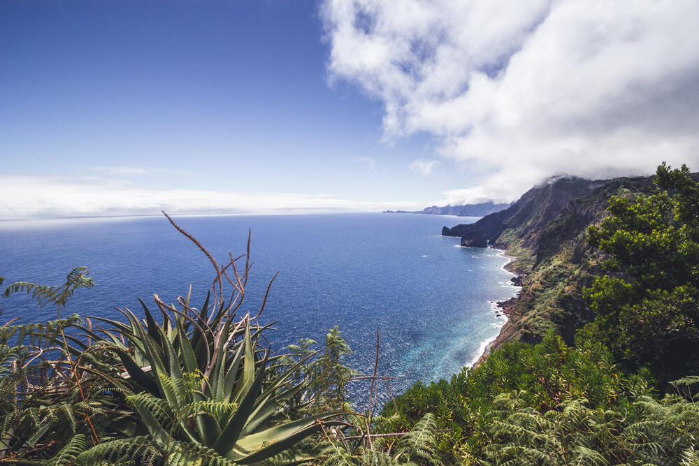 Madeira - Fineart photography by Kosianikosia