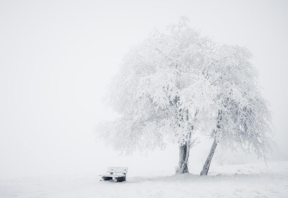Eiszeit - fotokunst von Heiko Gerlicher