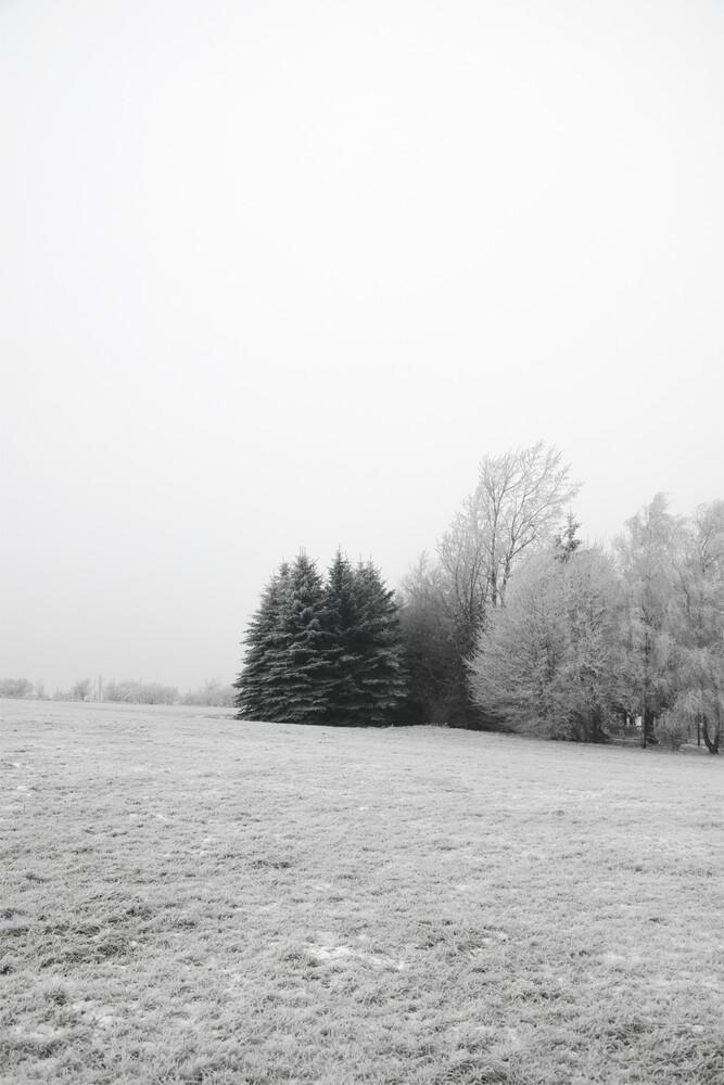 Winter Wonderland - Fineart photography by Studio Na.hili
