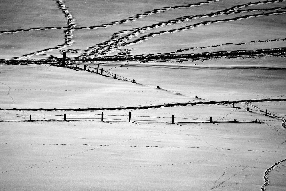 Muster  - fotokunst von Sascha Hoffmann-Wacker