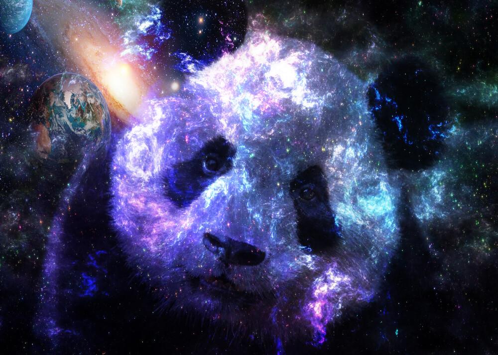Galaxy Baby Panda Planet - fotokunst von Lemo Boy