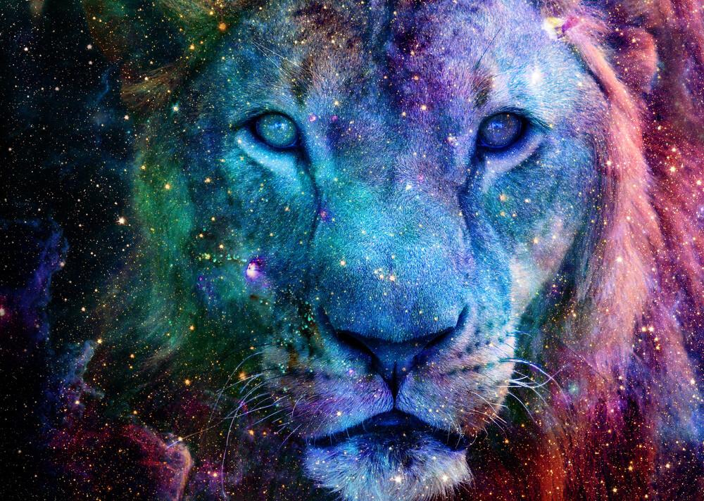 Galaxy Lion Face - fotokunst von Lemo Boy