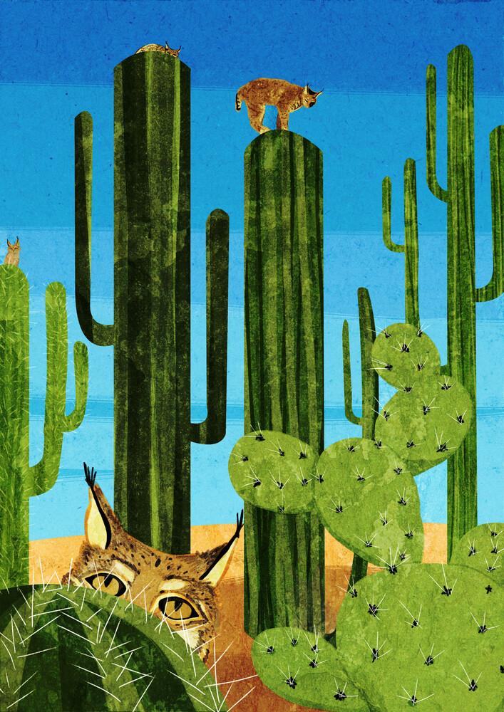 Bobcats - fotokunst von Katherine Blower