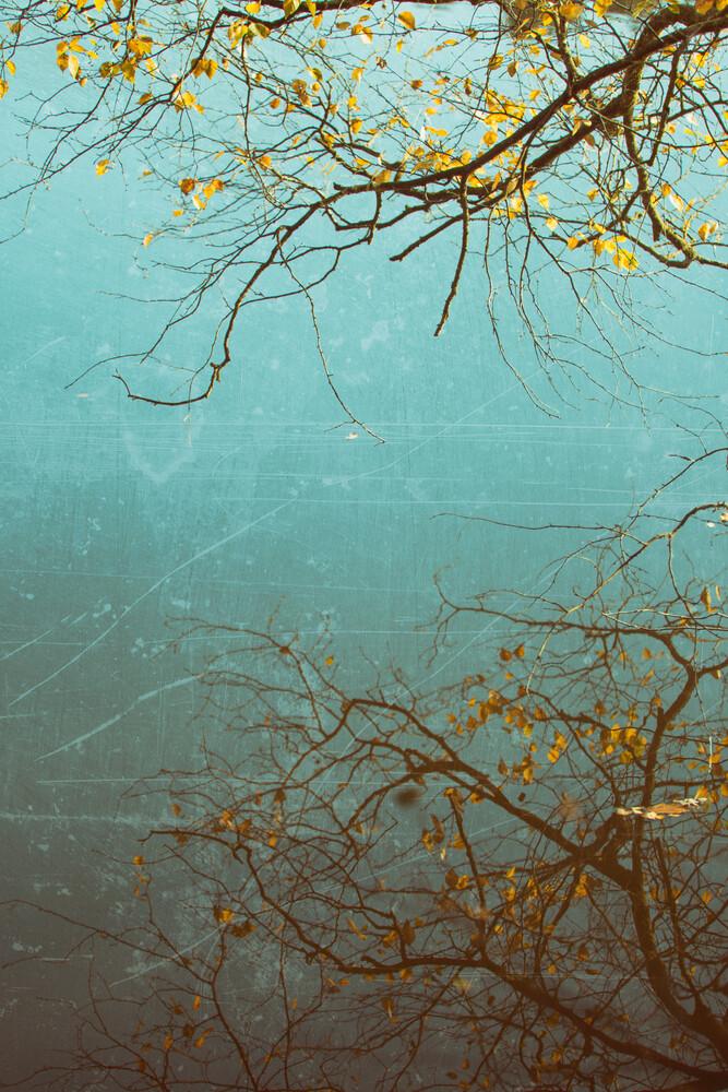 Baumspiegelung - fotokunst von Andrea Hansen