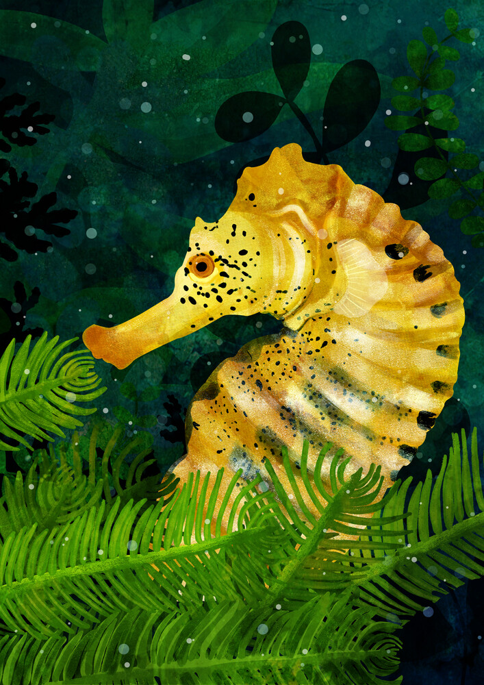 Yellow Seahorse - Fineart photography by Katherine Blower