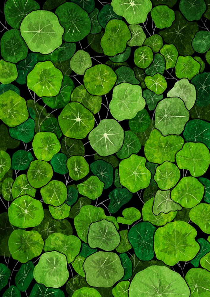 Green leaves - fotokunst von Katherine Blower