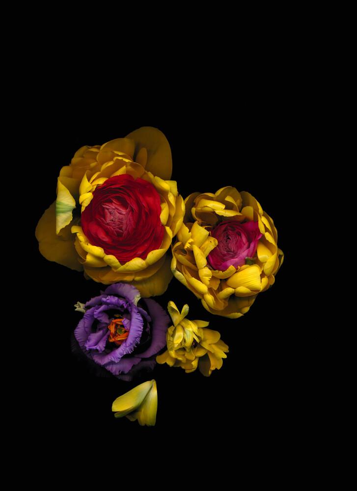 Junabelle - fotokunst von Ramona Reimann