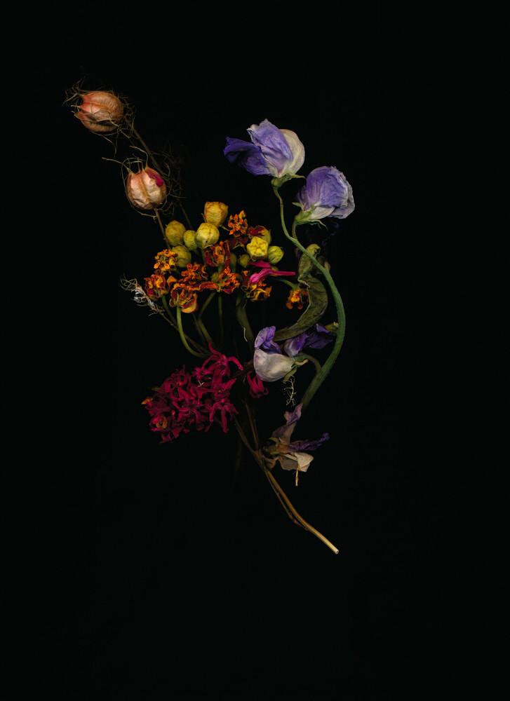 Juna - fotokunst von Ramona Reimann