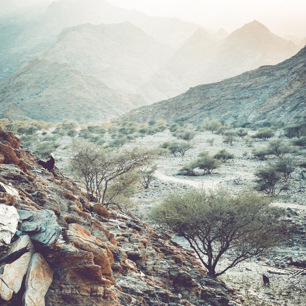 Hügel und Dunst III - fotokunst von Franz Sussbauer