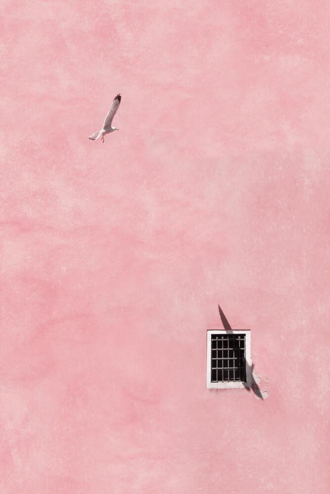 Prison Break - Fineart photography by Rupert Höller
