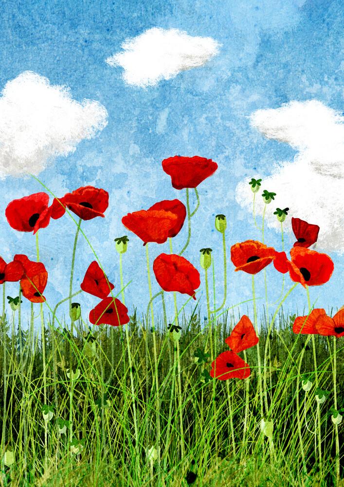 poppy field - fotokunst von Katherine Blower
