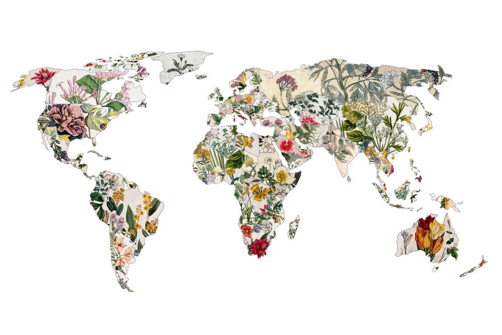 Vintage Botanical World - fotokunst von Bianca Green