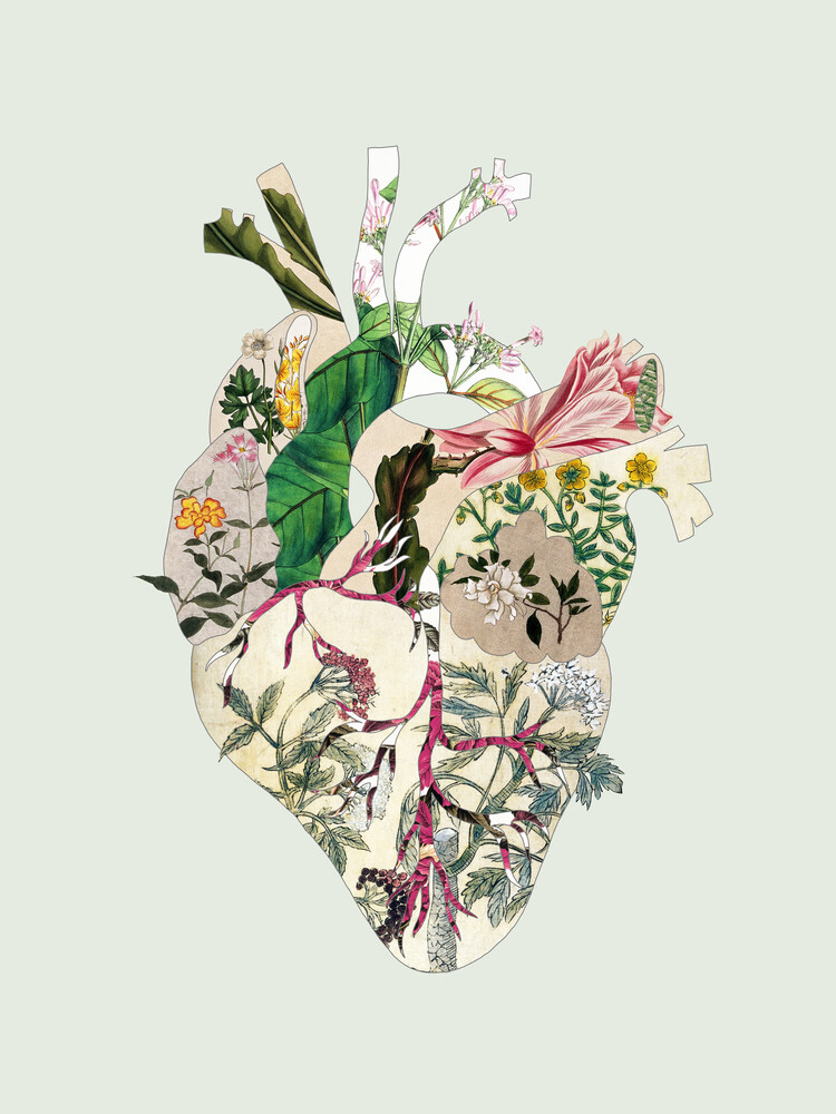 Vintage Botanical Heart - Fineart photography by Bianca Green