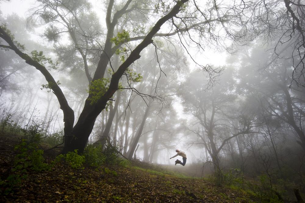 Los Padres National Forest, California, USA - fotokunst von Jakob Berr