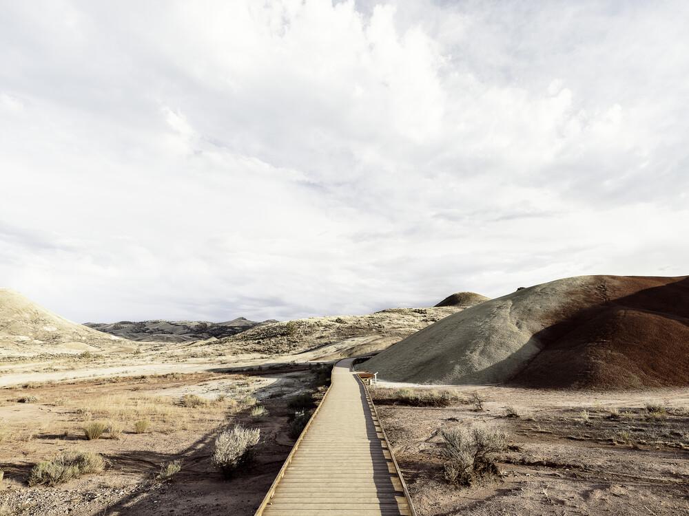 Painted Hills - fotokunst von Vera Mladenovic
