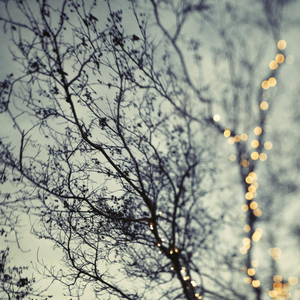 One More Sparkle II - fotokunst von Vera Mladenovic