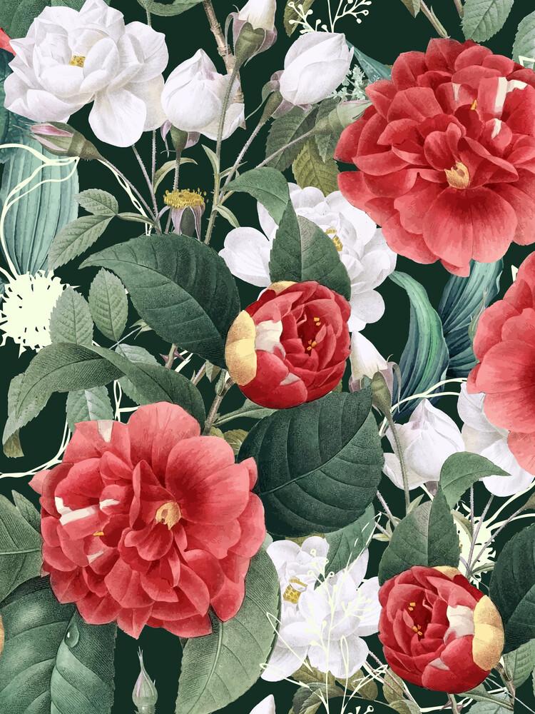 Botanical Wonder - fotokunst von Uma Gokhale