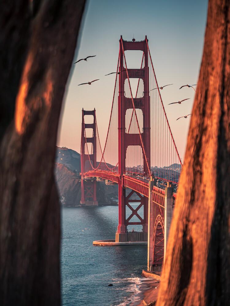 framed bridge - fotokunst von Dimitri Luft