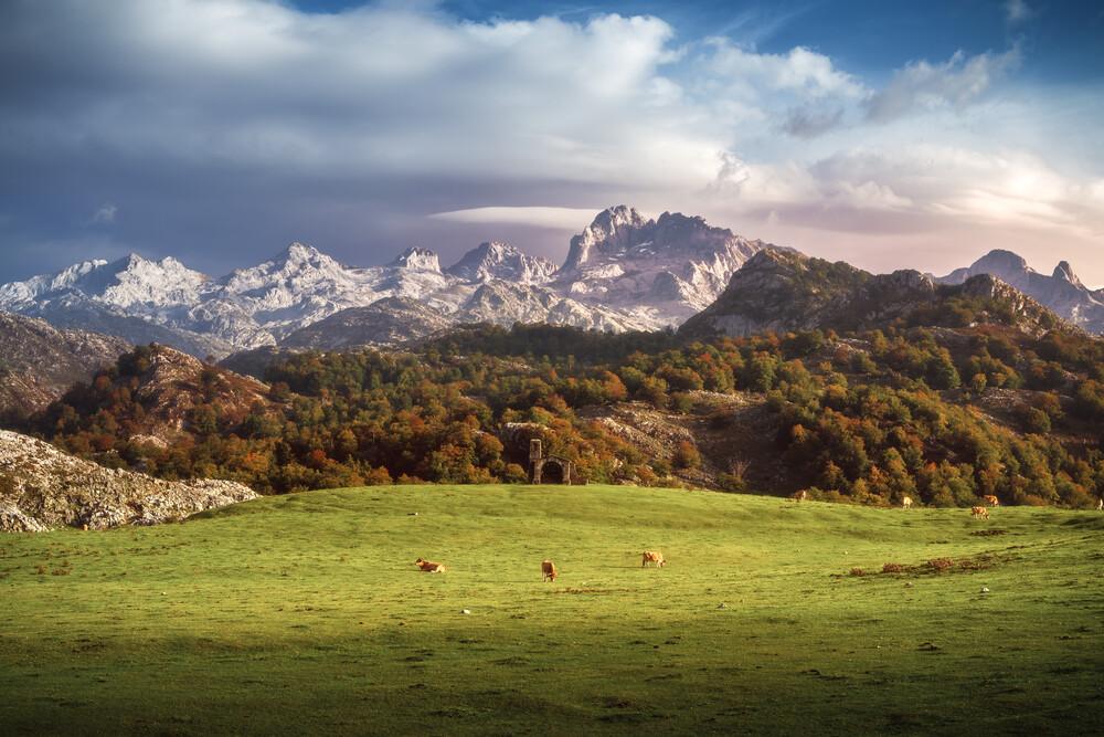 Asturien Picos de Europa Gebirgsmassiv mit Weidegrund - fotokunst von Jean Claude Castor