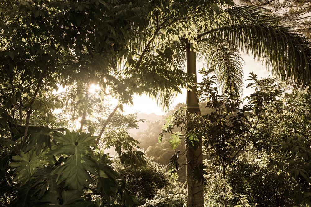 Wild Cuba - fotokunst von Tillmann Konrad
