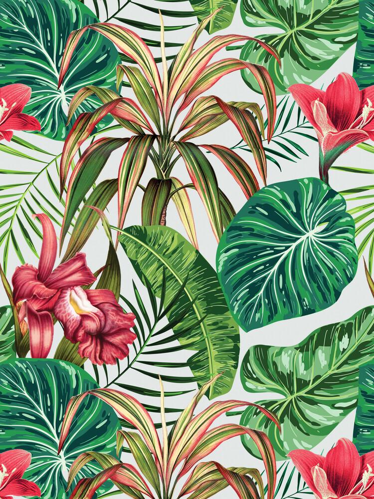 Tropica - Fineart photography by Uma Gokhale