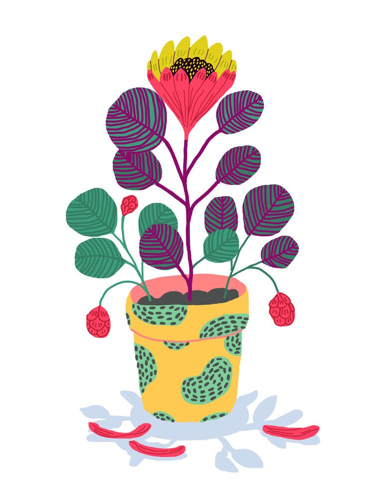 Plant pet - fotokunst von Ezra W. Smith