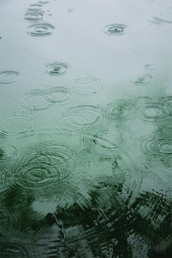 Raindrops under the Tree - fotokunst von Studio Na.hili
