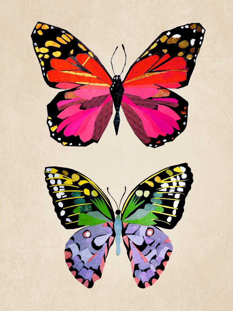 Schmetterlinge – Illustration für Kinder - fotokunst von Pia Kolle