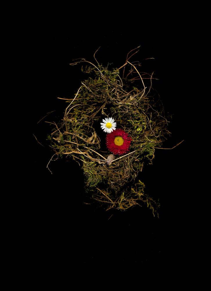 Sarah - fotokunst von Ramona Reimann