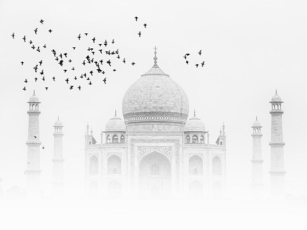 Vögel über dem Taj Mahal - fotokunst von Thomas Herzog