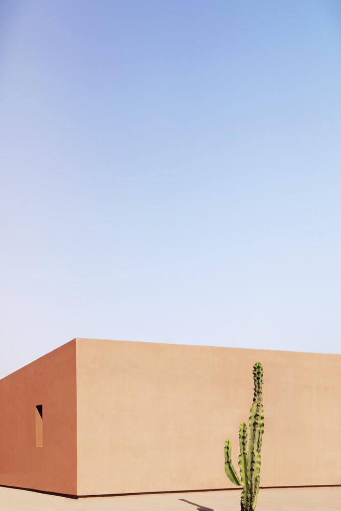 Cactus House - Fineart photography by Rupert Höller